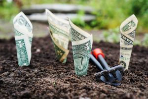 Sowing and Reaping Money