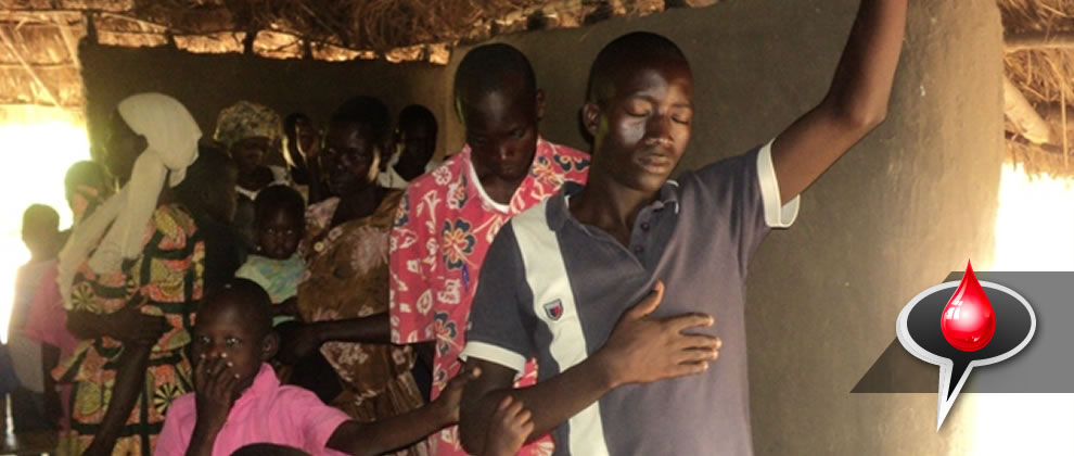 Africa Report: Hundreds Saved and Hundreds Healed!